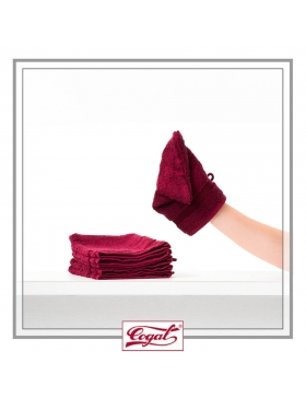 Set 6 Bath Gloves - TOP Ranger